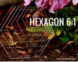 6:1 Hexagon