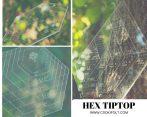 HEX TIP TOP