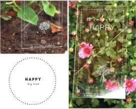 HAPPY-big
